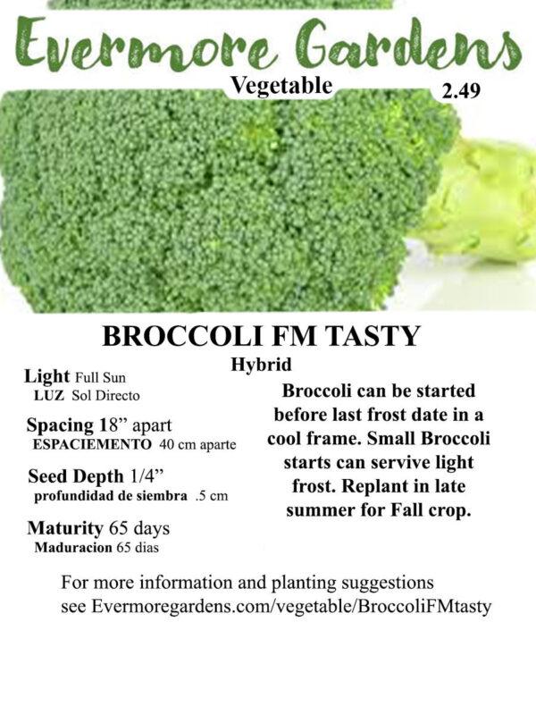 Evermore Gardens Broccoli FM Tasty Broccoli Hybrid Seeds