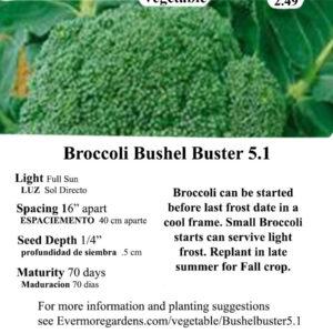 Evermore Gardens Broccoli Bushel Buster Broccoli Hybrid Seeds