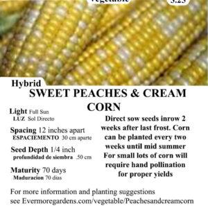 Evermore Gardens Sweet Peaches and Cream Corn Sweet Peaches and Cream Corn Hybrid Seeds