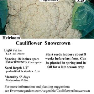 Evermore Gardens Cauliflower Snowcrown Cauliflower Snowcrown Heirloom Seeds