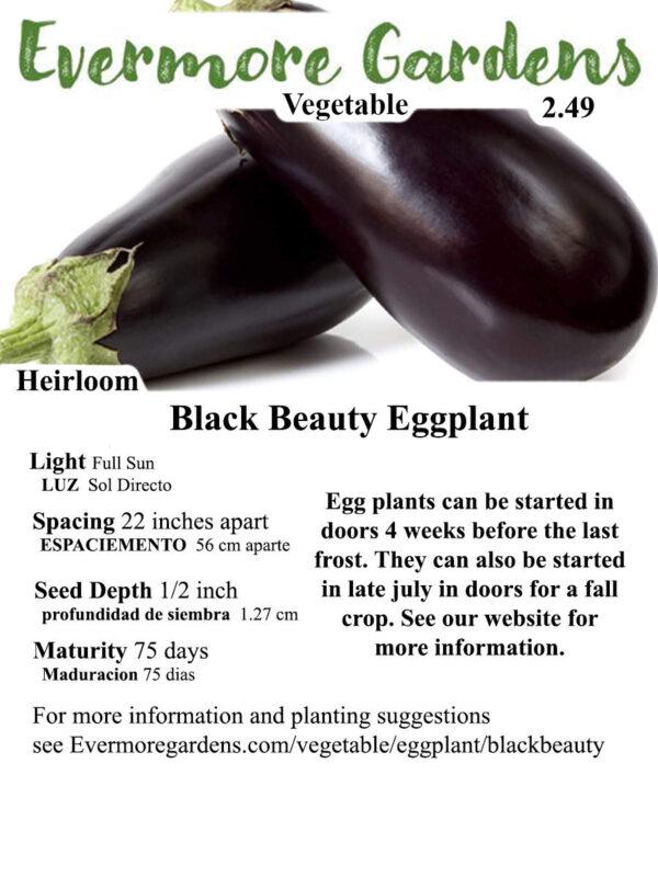 Evermore Gardens Black Beauty Eggplant Black Beauty Eggplant Heirloom Seeds