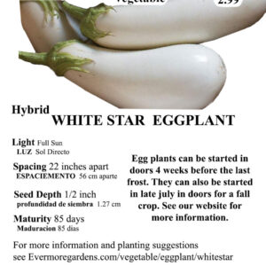Evermore Gardens White Star Eggplant White Star Eggplant Hybrid Seeds