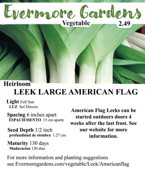 Evermore Gardens Large American Flag Leek Large American Flag Leek Heirloom Seeds