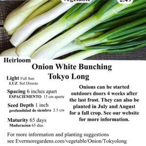 Evermore Gardens White Bunching Tokyo Long Onion White Bunching Tokyo Long Onion Heirloom Seeds