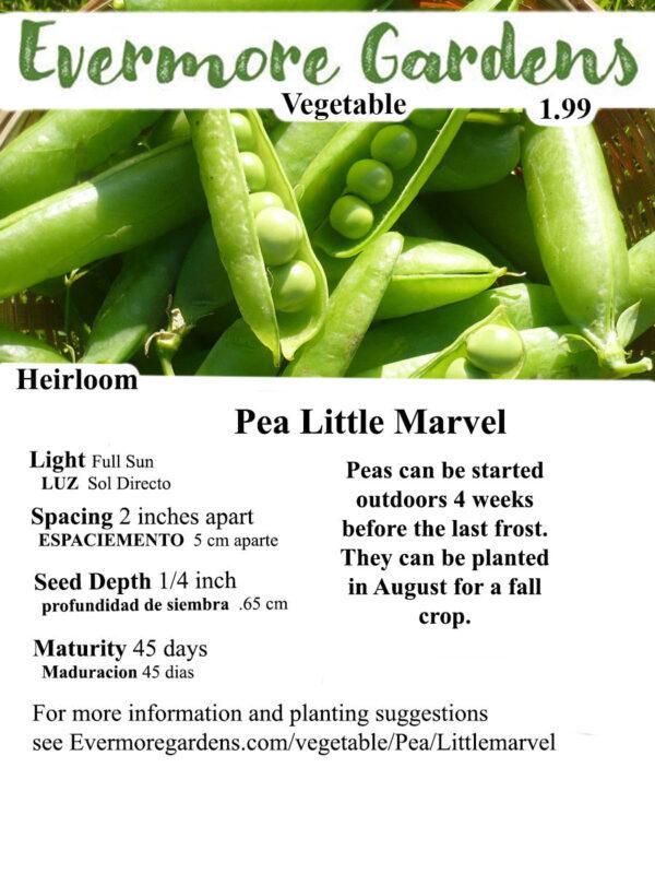 Evermore Gardens Little Marvel Pea Little Marvel Pea Heirloom Seeds