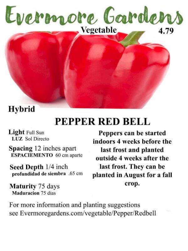 Evermore Gardens Red Bell Pepper Red Bell Pepper Hybrid Seeds
