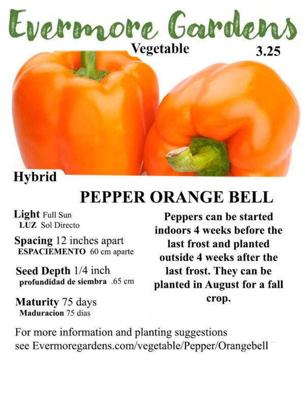 Evermore Gardens Orange Bell Pepper Orange Bell Pepper Hybrid Seeds