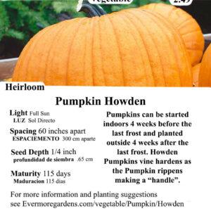Evermore Gardens Howden Pumpkin Howden Pumpkin Heirloom Seeds