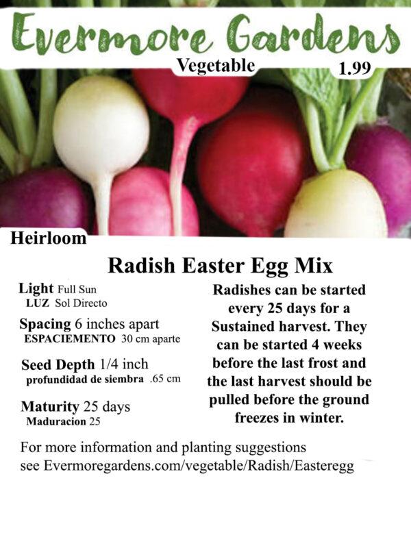 Evermore Gardens Easter Egg Mix Radish Easter Egg Mix Radish Heirloom Seeds