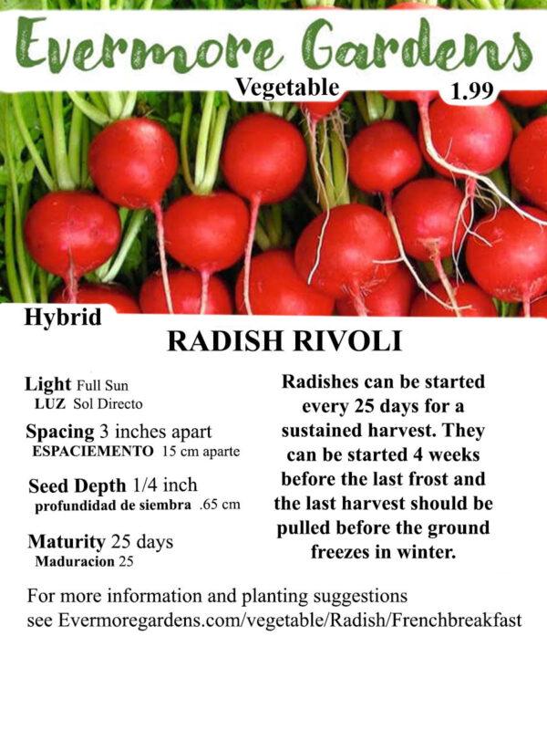 Evermore Gardens Rivoli Radish Rivoli Radish Hybrid Seeds
