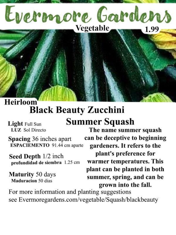 Evermore Gardens Black Beauty Zucchini ( Summer Squash ) Black Beauty Zucchini ( Summer Squash ) Heirloom Seeds