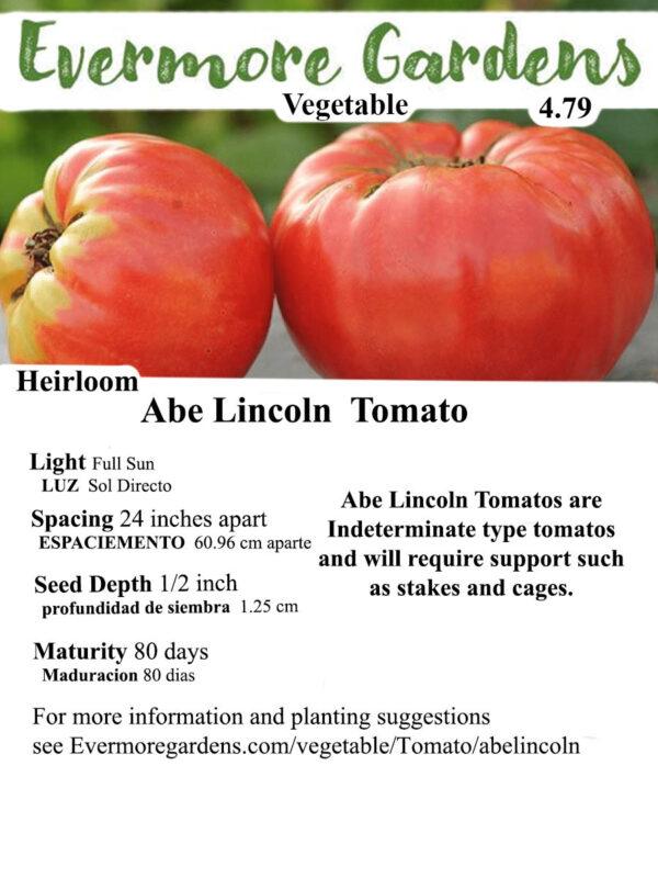 Evermore Gardens Abe Lincoln Tomato Abe Lincoln Tomato Heirloom Seeds