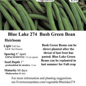 Evermore Gardens Green Bean (Blue Lake 274) Seeds Green Bean Heirloom Seeds
