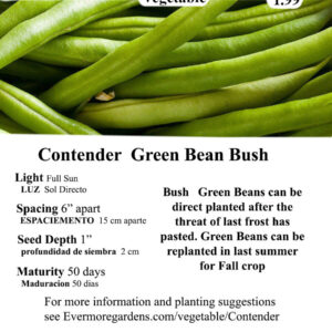 Evermore Gardens Green Bean Contender Green Bean Contender Heirloom Seeds