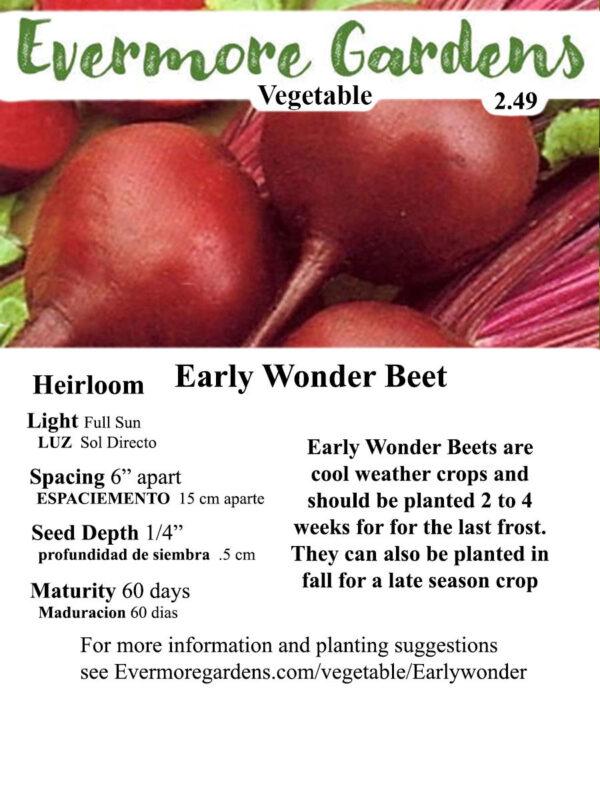 Evermore Gardens Early Wonder Beet Early Wonder Beet Heirloom Seeds