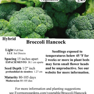 Evermore Gardens Hancock Broccoli Hybrid Seeds