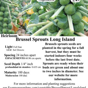 Evermore Gardens Brussel Sprouts Long Island Brussel Sprouts Heirloom Seeds