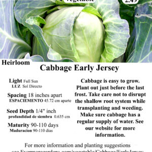 Evermore Gardens Cabbage Early Jersey Heirloom Seeds