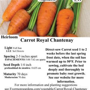 Evermore Gardens Carrot Royal Chantenay Heirloom Seeds