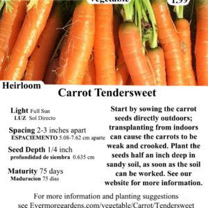 Evermore Gardens Carrot Tendersweet Heirloom Seeds