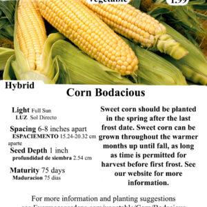 Evermore GardensBodacious Corn Hybrid Seeds