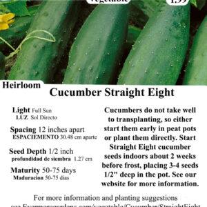 Evermore Gardens Straight Eight - Slicing cucumber Heirloom Seeds