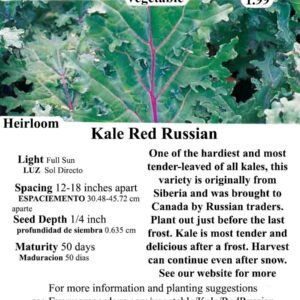 Evermore Gardens Kale Red Russian Heirloom Seeds