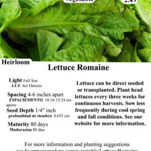 Evermore Gardens Romaine Lettuce -Green Lettuce Heirloom Seeds