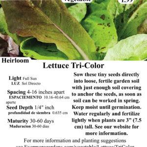 Evermore Gardens Tri-color Leaf Lettuce Heirloom Seeds